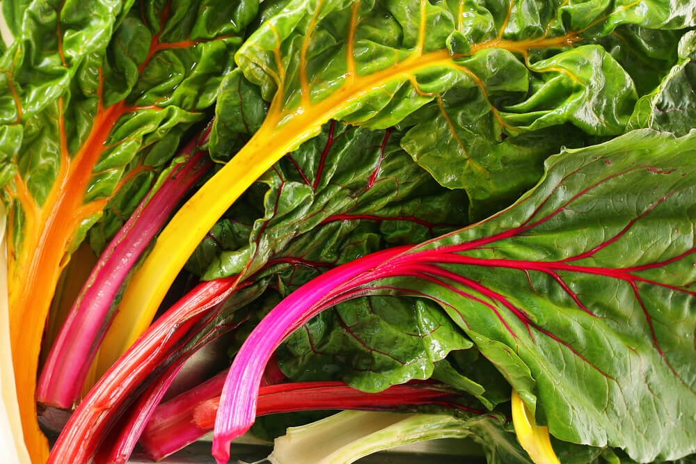 Swiss Chard is a colorful and healthy superfood.